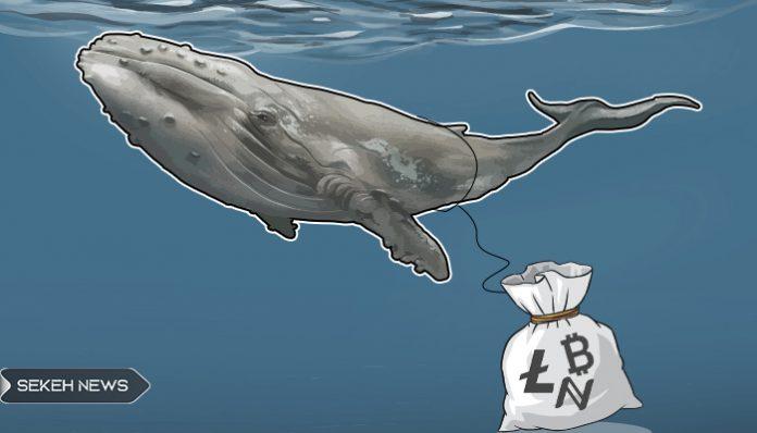 انتقال 2 میلیارد دلار بیت کوین توسط نهنگ عظیم الجثه و مرموز