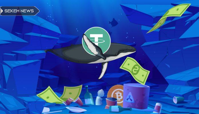 انتقال 2.37 میلیارد تتر توسط نهنگ ها هنگام افت بیت کوین