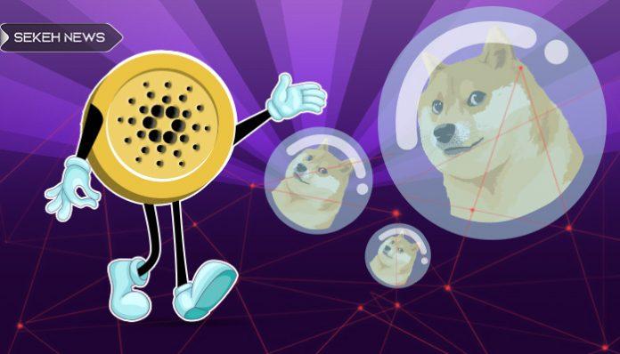 خالق کاردانو: دوج کوین حباب خطرناک است