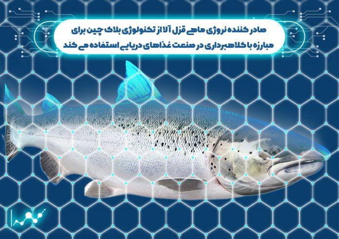 صادر کننده نروژی ماهی قزل آلا از تکنولوژی بلاک چین برای مبارزه با کلاهبرداری در صنعت غذاهای دریایی استفاده می کند