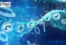 قوانین مربوط به رمزارزها در تابستان وضع خواهند شد