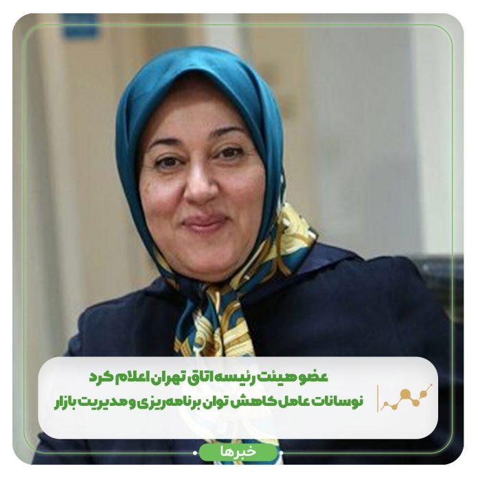 عضو هیئت رئیسه اتاق تهران اعلام کرد: نوسانات عامل کاهش توان برنامهریزی و مدیریت بازار