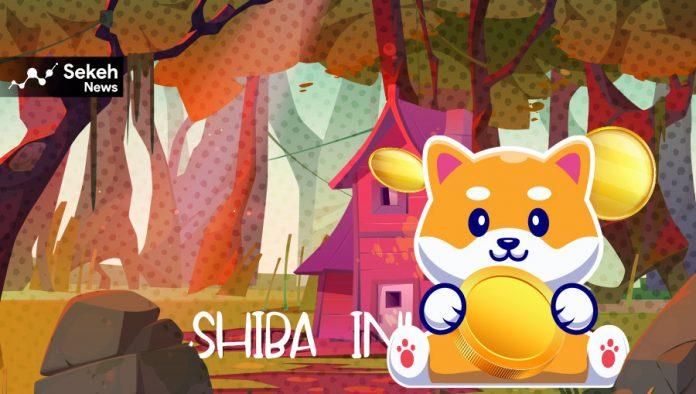 توکن شیبا اینو(Shiba Inu) چیست؟