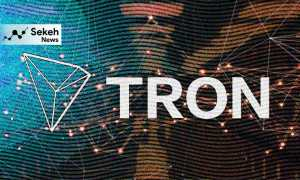 ساختار شبکه ترون