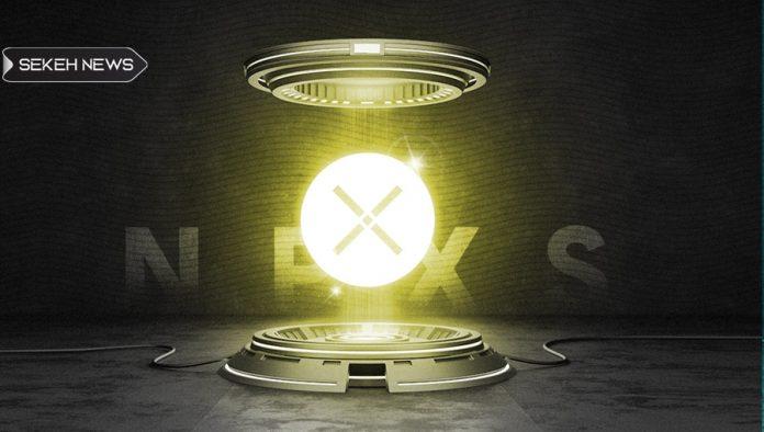 آشنایی با ارز دیجیتال پاندی ایکس (NPXS)